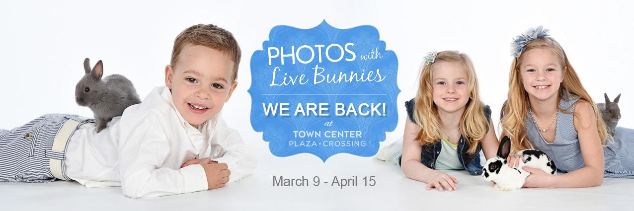Photos with Live Bunnies 2017