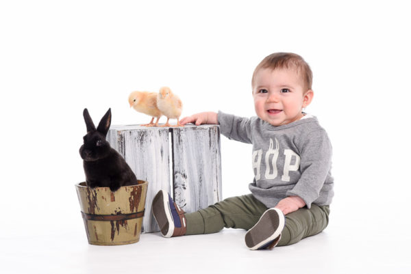 Live Bunnies and Baby Chicks Portrait Session