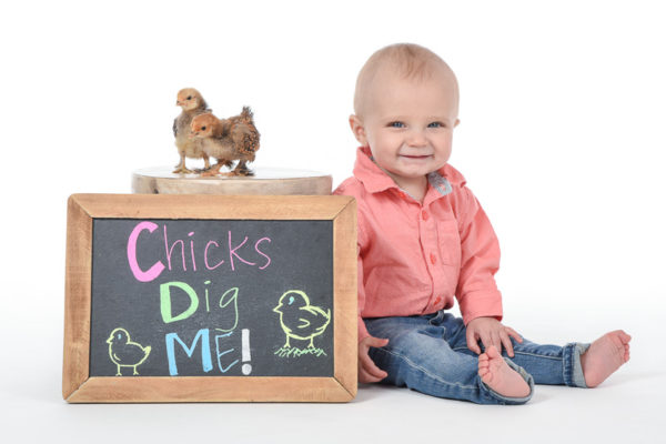 Baby Chicks Portrait Session